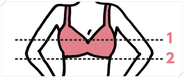 バストサイズの測り方